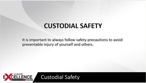Custodial Safety