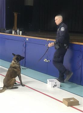 An ICE Agent talks about how K-9's assist in their daily jobs.