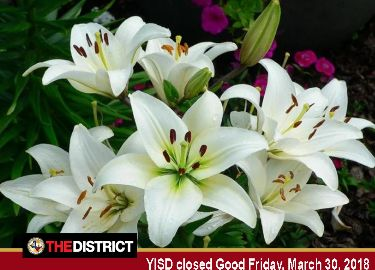 Fri. March 30-Good Friday/District Holiday