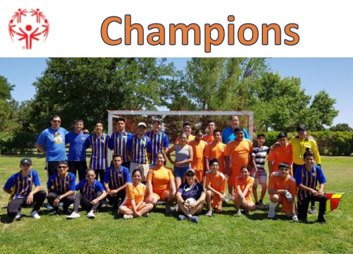 Soccer Champions Graphic