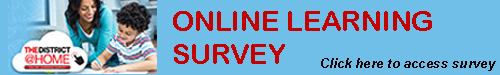 Online Learning Survey