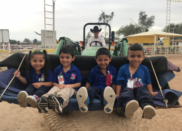 Teddy bears enjoying a tractor ride at Fifers Ranch Arena